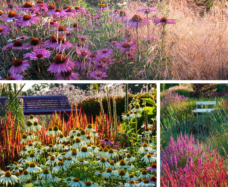 Sussex-Prairie-Gardens2