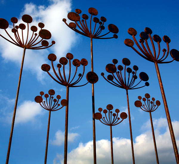 A group of Cow Parsley rusted metal garden sculptures