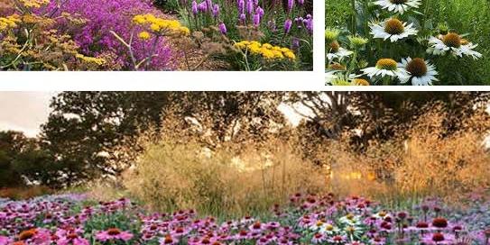 Garden Art and Sculpture exhibiting at Sussex Prairie Gardenss