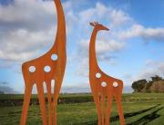 contemporary rusted metal giraffe sculptures for the garden